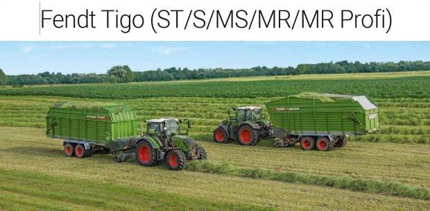 Tigo STSMS.JPG